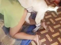 hot teen dog sex zoo - Sexo con Animales - Portalzoo->
