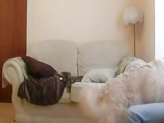 Big dog hot - Sexo con Animales - Portalzoo->