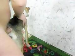 joven experta en dogsex - Sexo con Animales