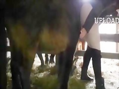 Amateur horse sex - Sexo con Animales