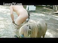 Zoo gay sex El pony me parte el culo